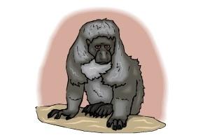 gorilla spiele kostenlos