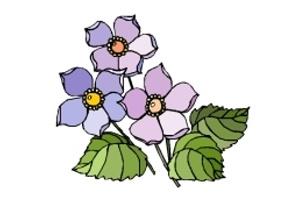 Ausmalbilder Blumen Blüten