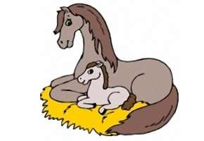 Ausmalbilder Pferde Fohlen