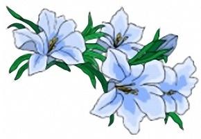 Blumen Ausmalbilder Gratis