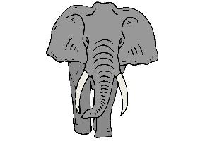 Elefanten Ausmalbilder Kostenlos