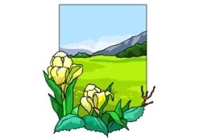landschaften ausmalbilder kostenlos