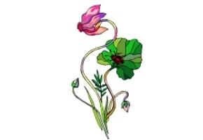 Malvorlagen Blumen Gratis Ausdrucken