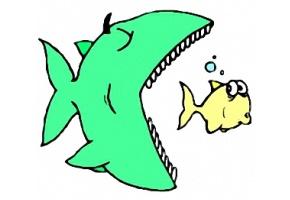 Malvorlagen Fische Kostenlos Ausdrucken