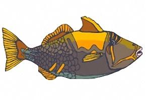 malvorlagen fische kostenlos