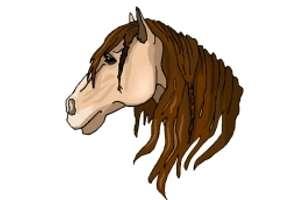 Malvorlagen Pferdekopf Kostenlos