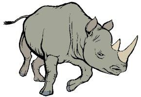 malvorlagen tiere büffel