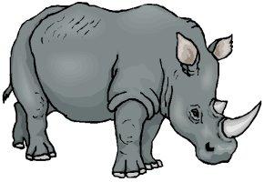 Malvorlagen Tiere Nashorn