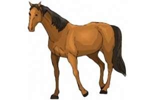 online spiele kinderspiele pferde