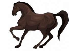 kinder pferde spiele