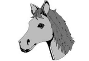 Pferdekopf Malvorlagen