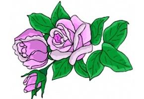 Rosen Malvorlagen Kostenlos